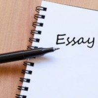 16 Different Types Of Essay