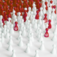 Malware Campaigns Sharing Network Resources: r00ts.ninja
