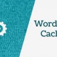 What is WordPress Caching? Importance of WordPress Caching