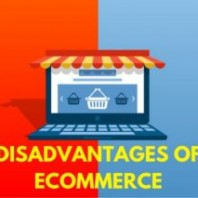 16 Disadvantages Of E-commerce – Problems with E-commerce