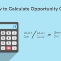 What is Opportunity Cost? Meaning, Examples and Calculations