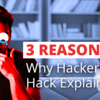 Why Do Hackers Hack? – 3 Reasons Explained