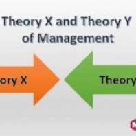 Theory X and theory Y of Management: Meaning, Differences & Application