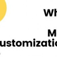 Mass Customization: Definition, Types, Advantages and Disadvantages