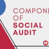 Social Audit: Definition, Examples, Importance, Objectives & Components