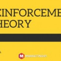 Reinforcement Theory: Meaning, and Examples of Reinforcement Theory