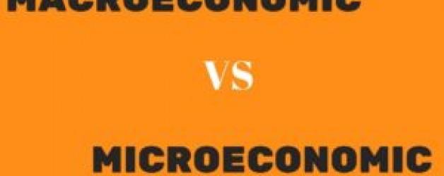 5 Key differences between Microeconomics and Macroeconomics