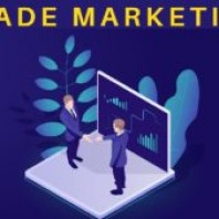 Trade Marketing: Definition, Strategies, Advantages, Disadvantages