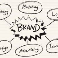 What is a Brand Portfolio? Meaning and Examples