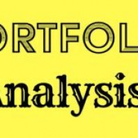 What is Portfolio Analysis?