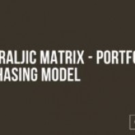 What is The Kraljic Matrix – Portfolio Purchasing Model?