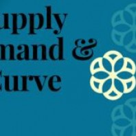 The Supply and Demand Curve – Explained in Detail