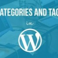 WordPress Categories vs WordPress Tags – A Brief Comparison
