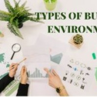 What are the Different Types of Business Environment?