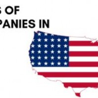 5 Main Types of Companies in the US
