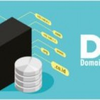 What is DNS? How does DNS Work?